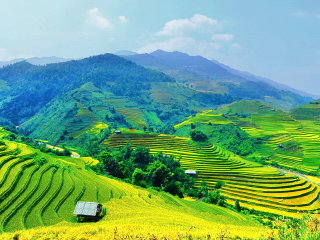Discovery the Best Vietnam Rice Terrace - Trekking Sapa – Mu Cang Chai Tour 5D4N