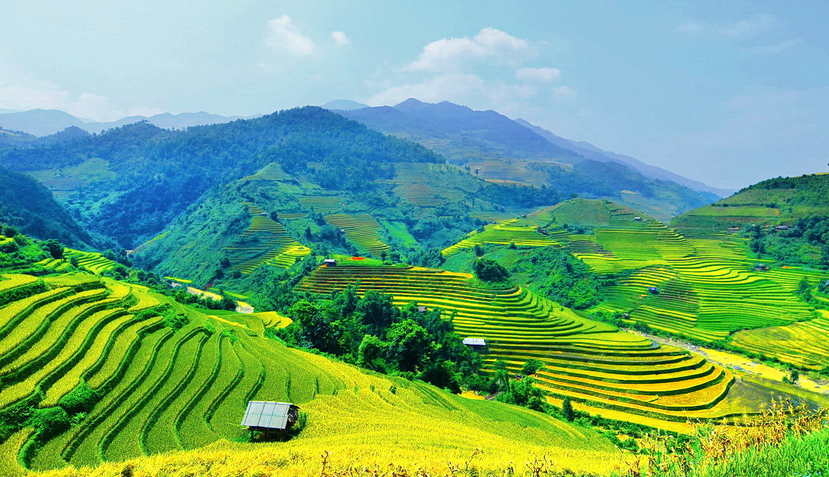 Discovery the best vietnam rice terrace trekking sapa for Terraces opening times