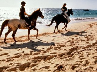 Krabi Horse Riding on the Beach