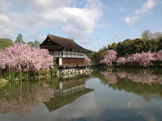 1-Day Kyoto Tour (Round-trip from Osaka)