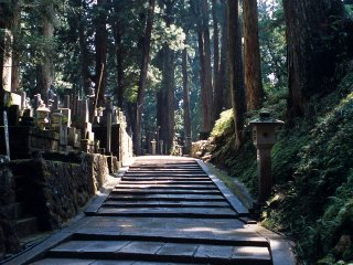 2-Day World Heritage Site - Mt. Koya Tour (With English-speaking Guide on Day 1)
