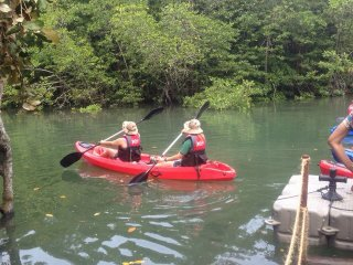 Mangrove Kayaking Tour © Treasure Bay Bintan