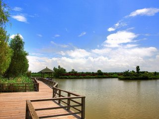 Guangzhou One Day Tour of Nansha Wetlands Park, Guangzhou Art Museum, Culture Park © chinatravelkey