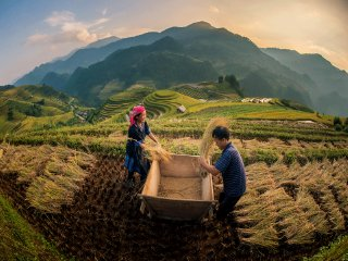 Sapa Authentic Tours 3 Nights / 2 Days