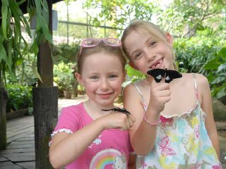 Butterfly Park & Insect Kingdom - Sentosa © Sentosa
